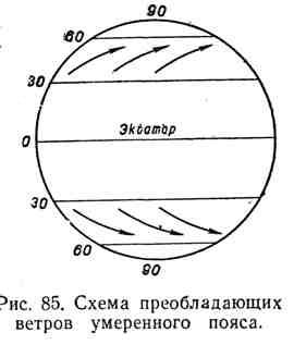 Схема преобладающих ветров умеренного пояса