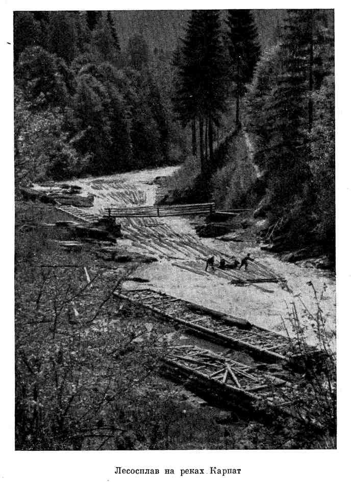 Лесосплав на реках Карпат