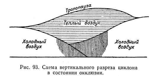 Схема вертикального разреза циклона в состоянии окклюзии