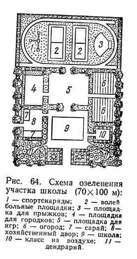 Схема озеленения участка школы