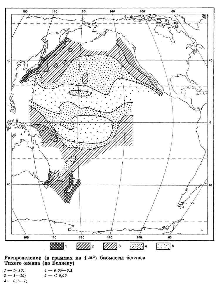 Распределение биомассы бентоса Тихого океана