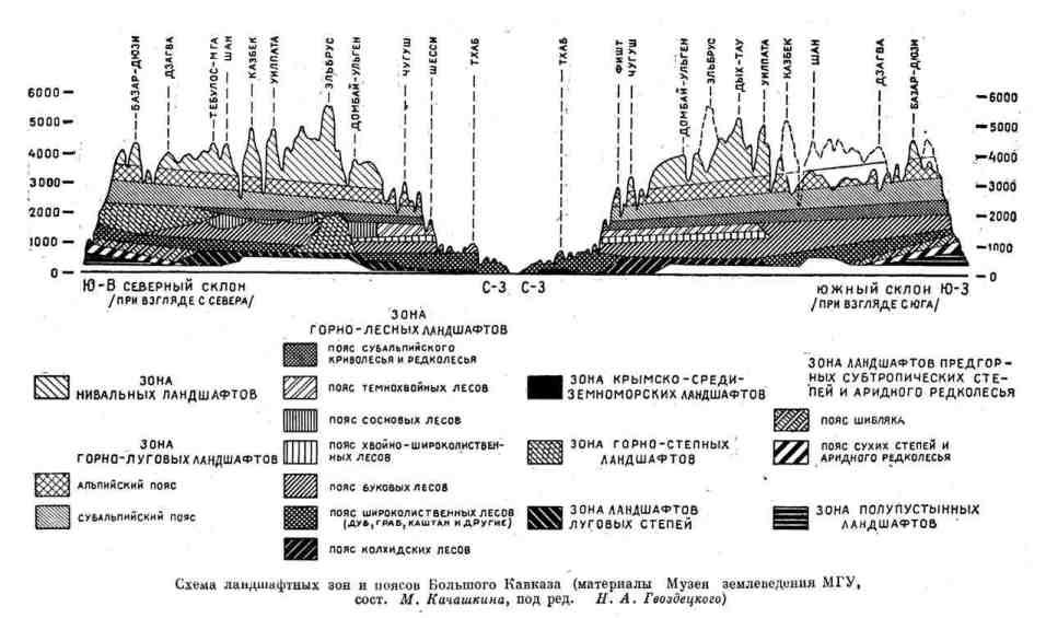 Схема ландшафтных зон и поясов Большого Кавказа