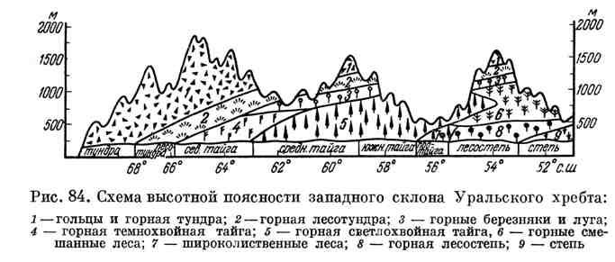 Схема высотной поясности западного склона Уральского хребта