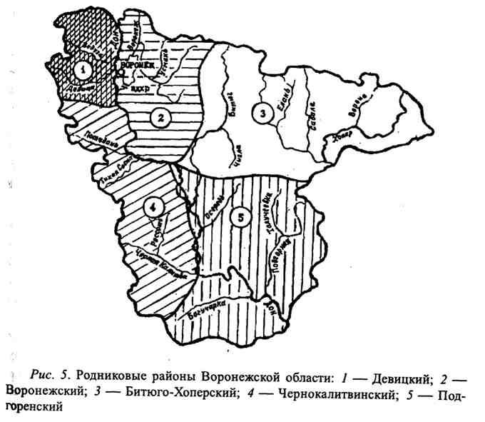 Родниковые районы Воронежской области