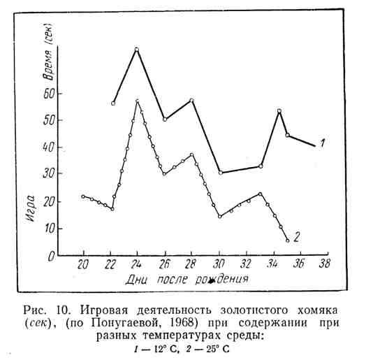 Игровая деятельность золотистого хомяка при содержании при разных температурах среды