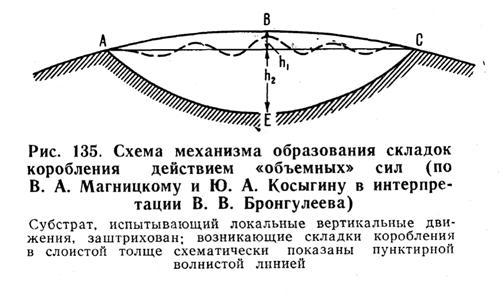 """Схема образования складок коробления действием """"объёмных"""" сил"""