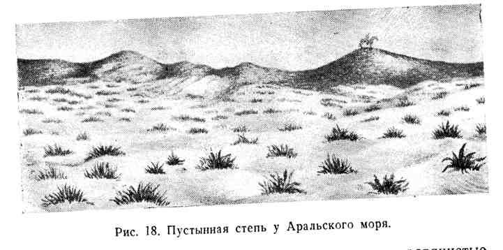 Пустынная степь у Аральского моря