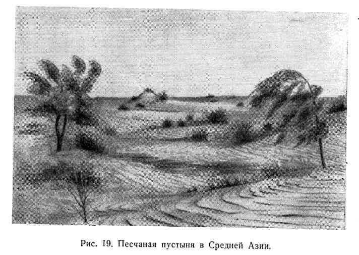 Песчаная пустыня в Средней Азии