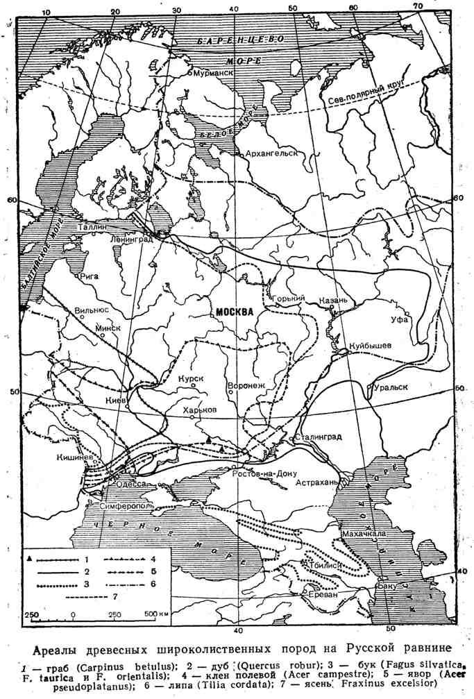 Ареалы древесных широколиственных пород на Русской равнине
