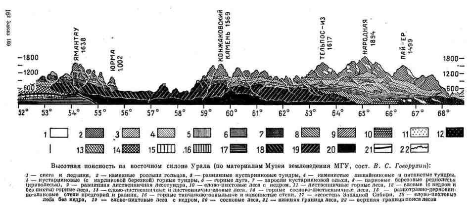 Высотная поясность на восточном склоне Урала