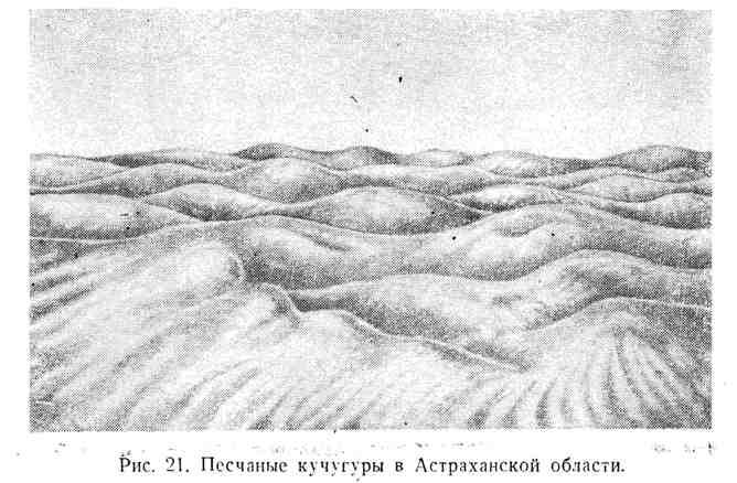 Песчаные кучугуры в Астраханской области