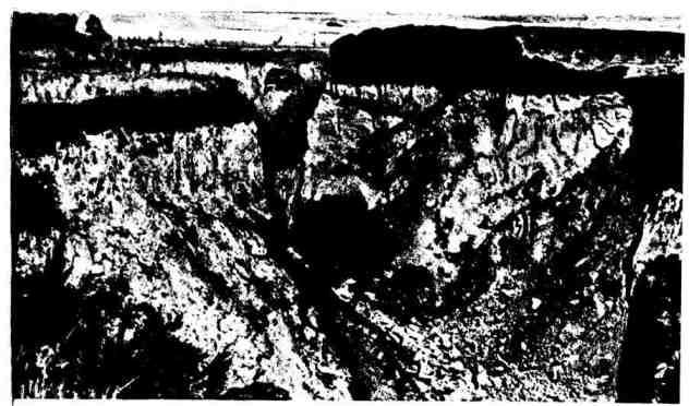 Овраг на чернозёмных почвах