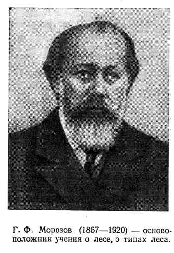 Г. Ф. Морозов - основоположник учения о лесе, типах леса
