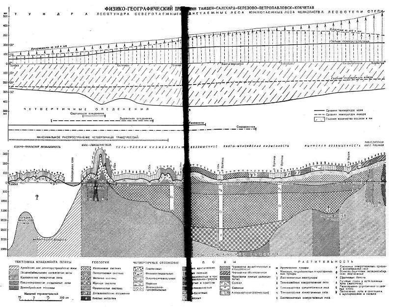 Физико-географический профиль по линии ТАМБЕЙ-САЛЕХАРД-БЕРЕЗОВО-ПЕТРОПАВЛОВСК-КОКЧЕТАВ