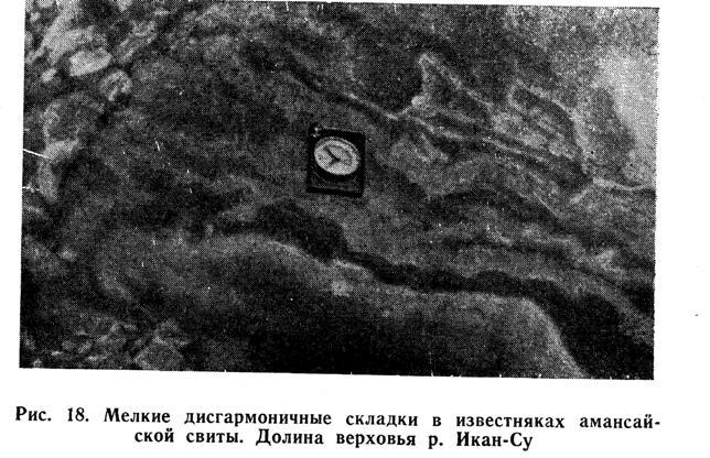 Мелкие дисгармоничные складки в известняках амансайской свиты. Долина верховья реки Икан-Су