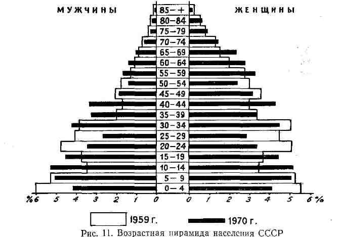 Возрастная пирамида населения СССР