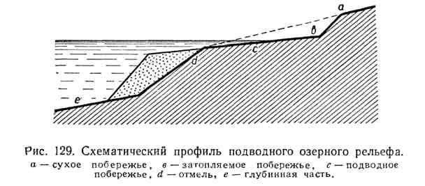 Схематический профиль подводного озёрного рельефа