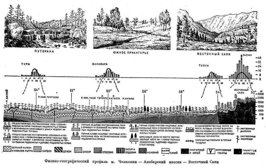 Физико-географический профиль м. Челюскин - Анабарский массив - Восточный Саян