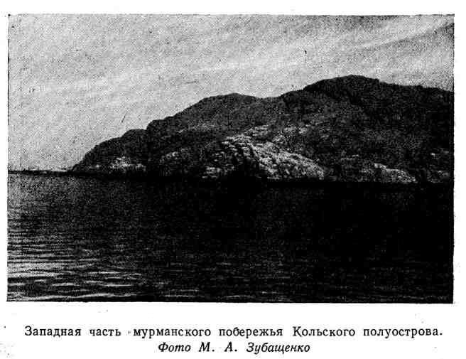 Западная часть мурманского побережья Кольского полуострова