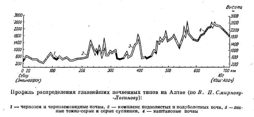 Профиль распределения главнейших почвенных типов на Алтае