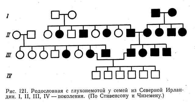 Родословная с глухонемотой у семей из Северной Ирландии, I, II, III, IV - поколения