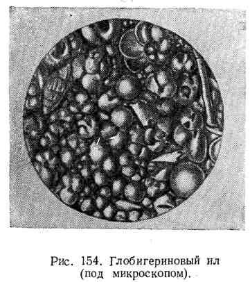 Глобигериновый ил