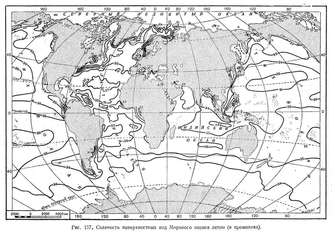 Солёность поверхностных вод Мирового океана летом
