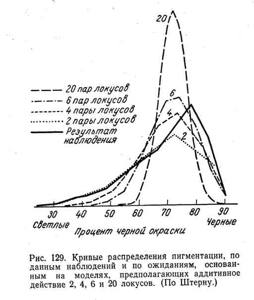 Кривые распределения пигментации, по данным наблюдений и по ожиданиям, основанным на моделях, предполагающих активное действие 2, 4, 6 и 20 локусов
