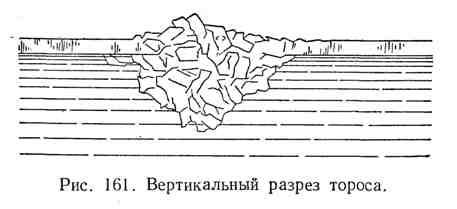 Вертикальный разрез тороса