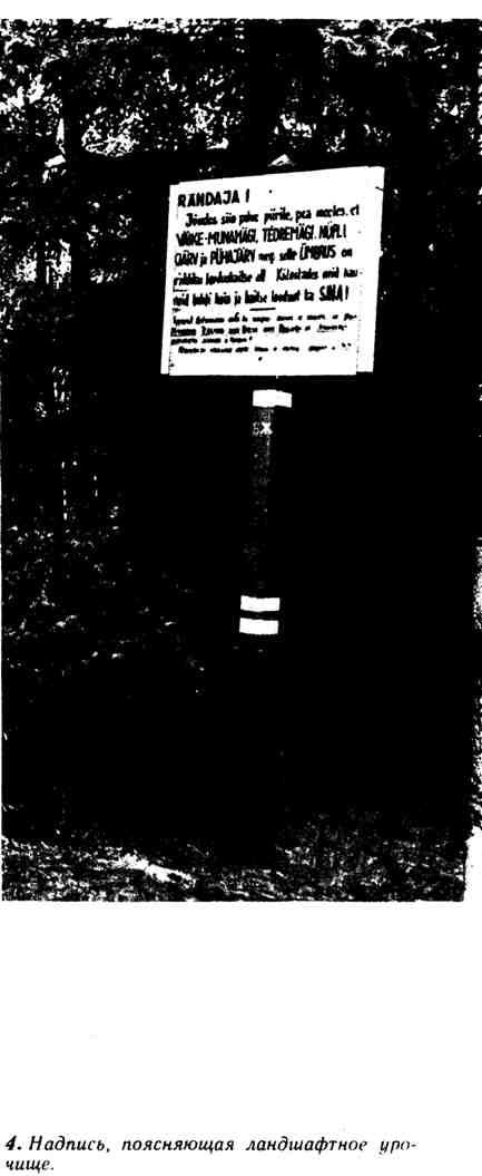 Надпись, поясняющая ландшафтное урочище