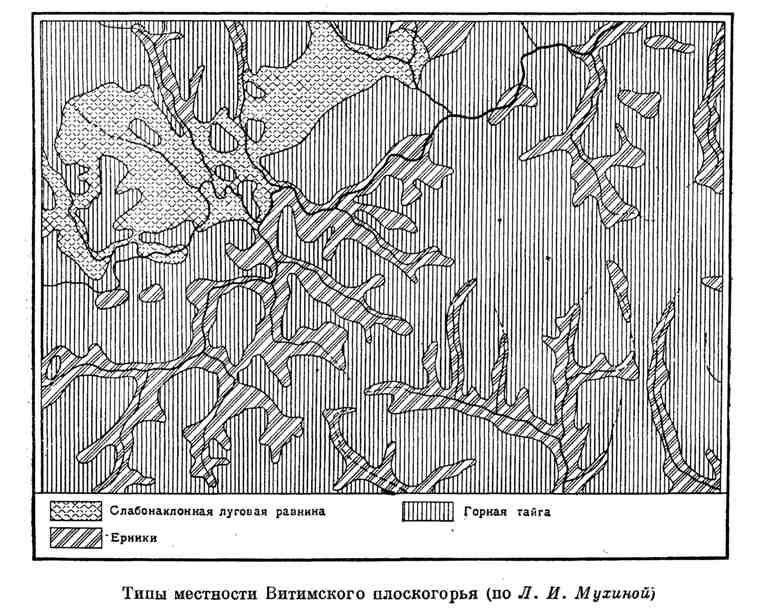 Типы местности Витимского плоскогорья