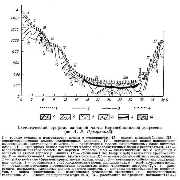 Схематический профиль западной части Верхнебикинской депрессии