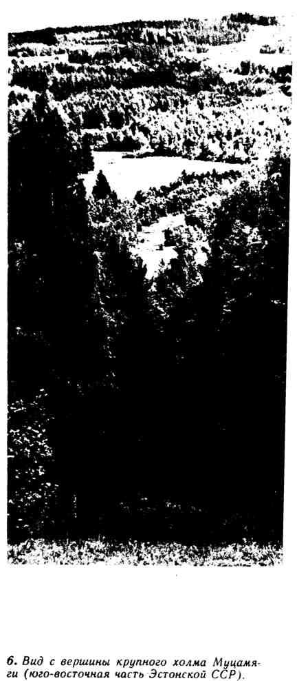 Вид с вершины крупного холма Муцамяги
