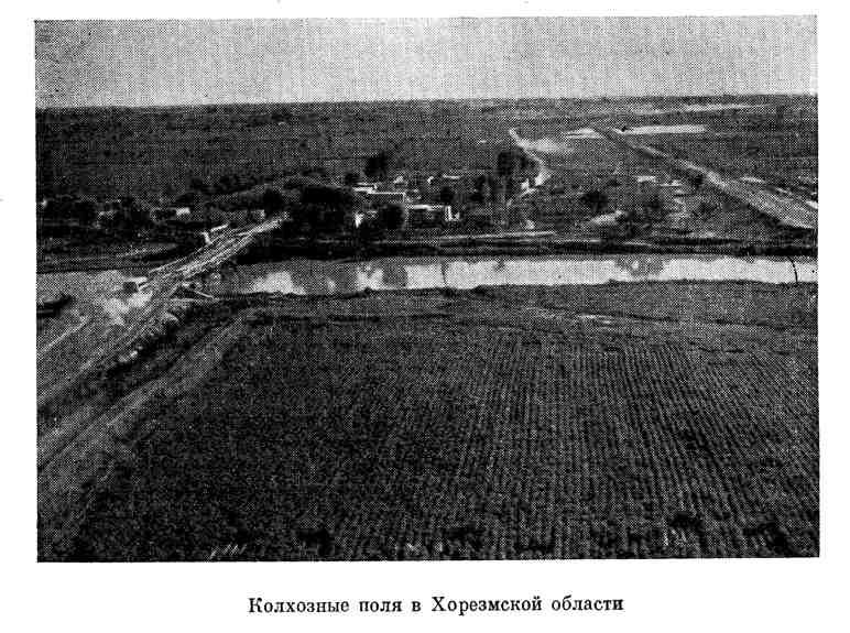 Колхозные поля в Хорезмской области