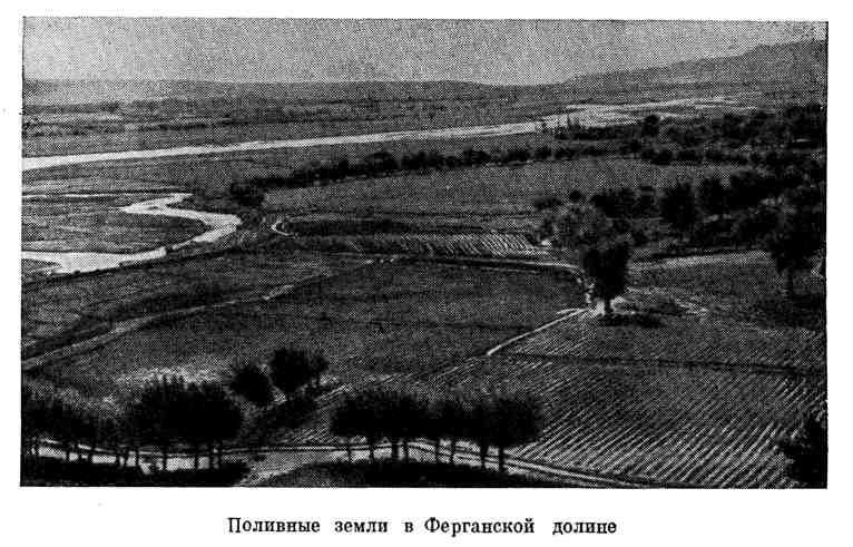 Поливные земли в Ферганской долине
