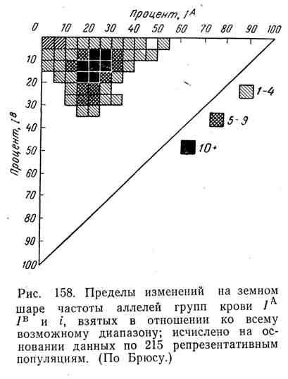 Пределы изменений на земном шаре частоты аллелей групп крови IA IB и i, взятых в отношении ко всему возможному диапазону