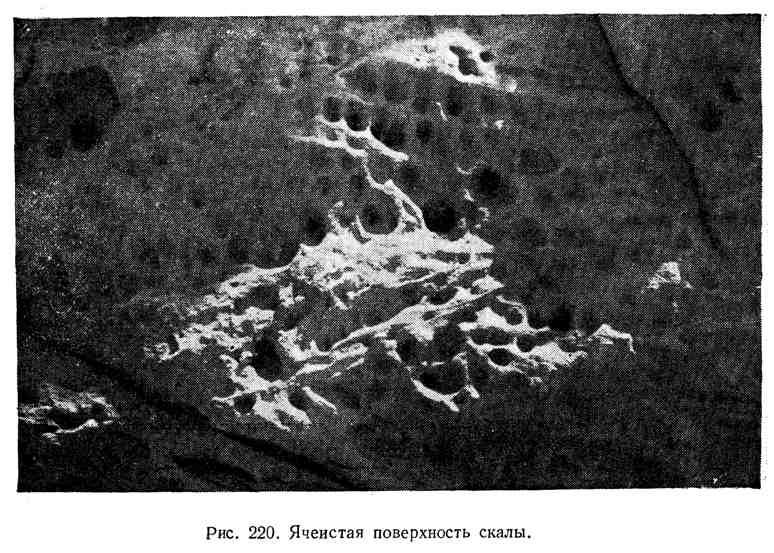 Ячеистая поверхность скалы