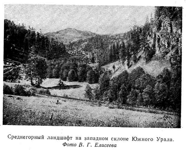 Среднегорный ландшафт на западном склоне Южного Урала