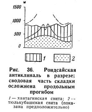 Родсайская антиклиналь в разрезе; сводная часть складки осложнена продольным прогибом