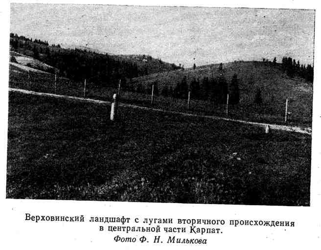Верховинский ландшафи с лугами вторичного происхождения в центральной части Карпат
