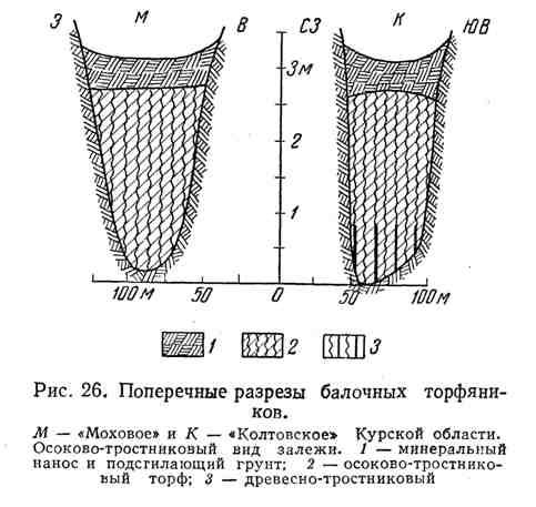 Поперечные разрезы балочных торфяников