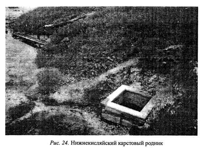 Нижнекисляйский карстовый родник в Воронежской области