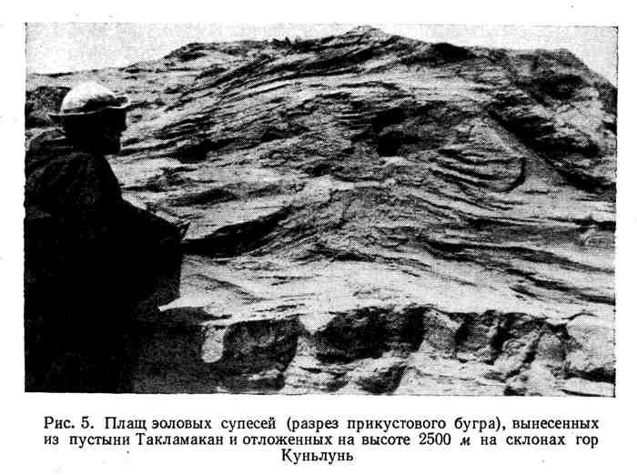 Плащ эоловых супесей, вынесенных из пустыни Такламакан и отложенных на высоте 2500 м на склонах гор Куньлунь