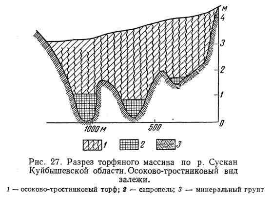 Разрез торфяного массива по р. Сускан Куйбышевской области. Осоково-тростниковый вид залежи