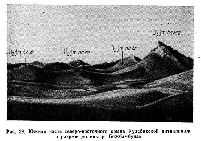 Южная часть северо-восточного крыла Кулебякской антиклинали в разрезе долины реки Божбамбулак