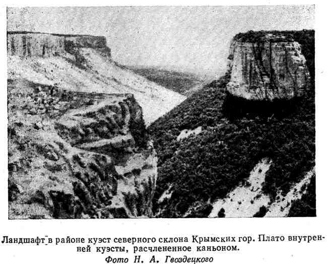 Ландшафт в районе куэст северного склона Крымских гор. Плато внутренней куэсты, расчленённое каньоном