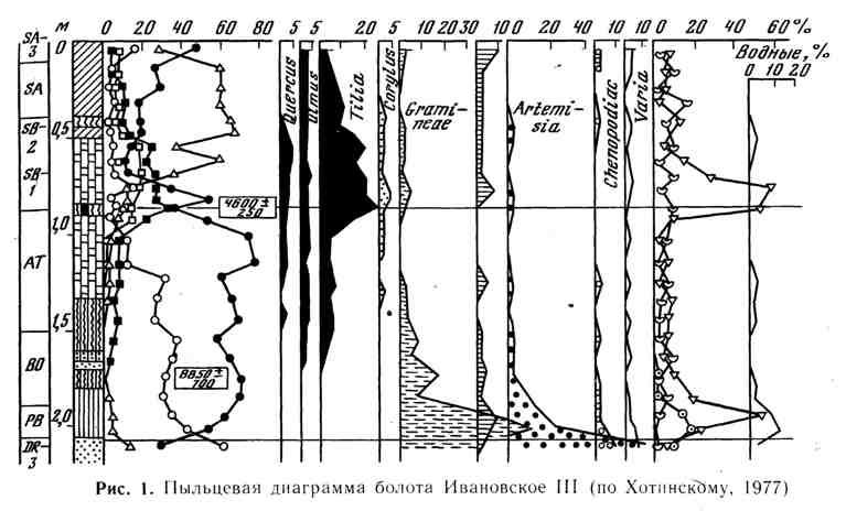 Пыльцевая диаграмма болота Ивановское III