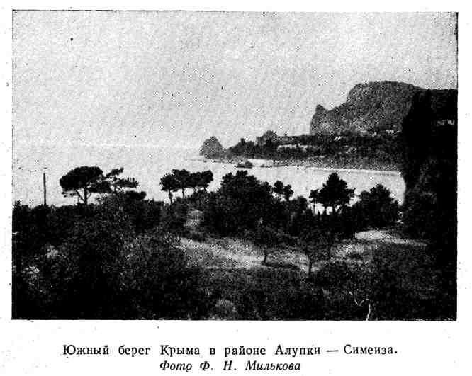 Южный берег Крыма в районе Алупки - Симеиза