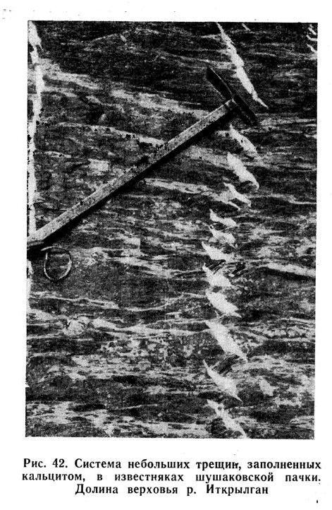 Система небольших трещин, заполненных кальцитом, в известняках шушаковской пачки. Долина верховья реки Иткрылган
