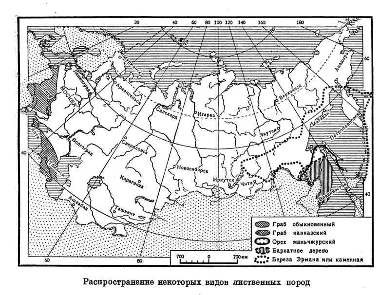 Распространение некоторых видов лиственных пород